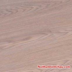 Sàn gỗ Rainforest 8mm IR85