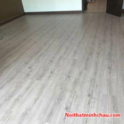 Sàn gỗ Rainforest IR82 8mm hoàn thiện