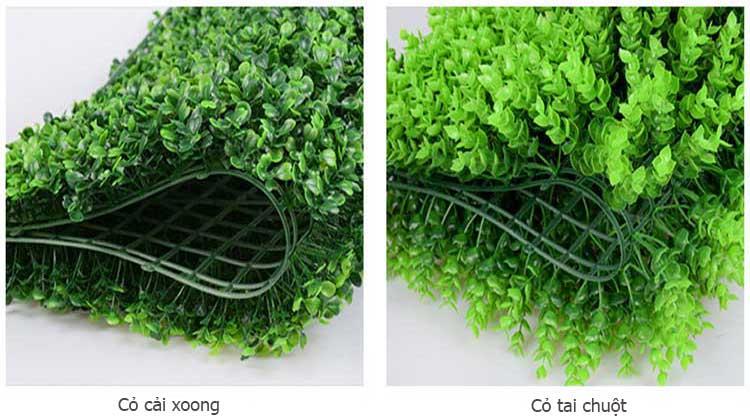 Các loại cỏ nhựa treo tường