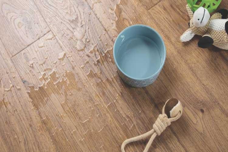 đặc điểm nổi bật của sàn gỗ malaysia chính hãng